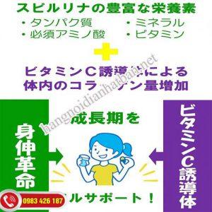 Tảo tăng chiều cao Shinshin Kakumei Nhật Bản cung cấp collagen