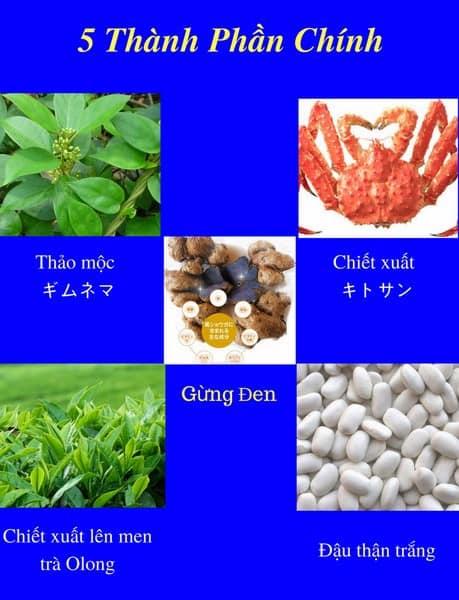 thanh_phan_vien_uong_itoh_diet_grande tra den